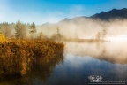 Morgennebel am Barmsee